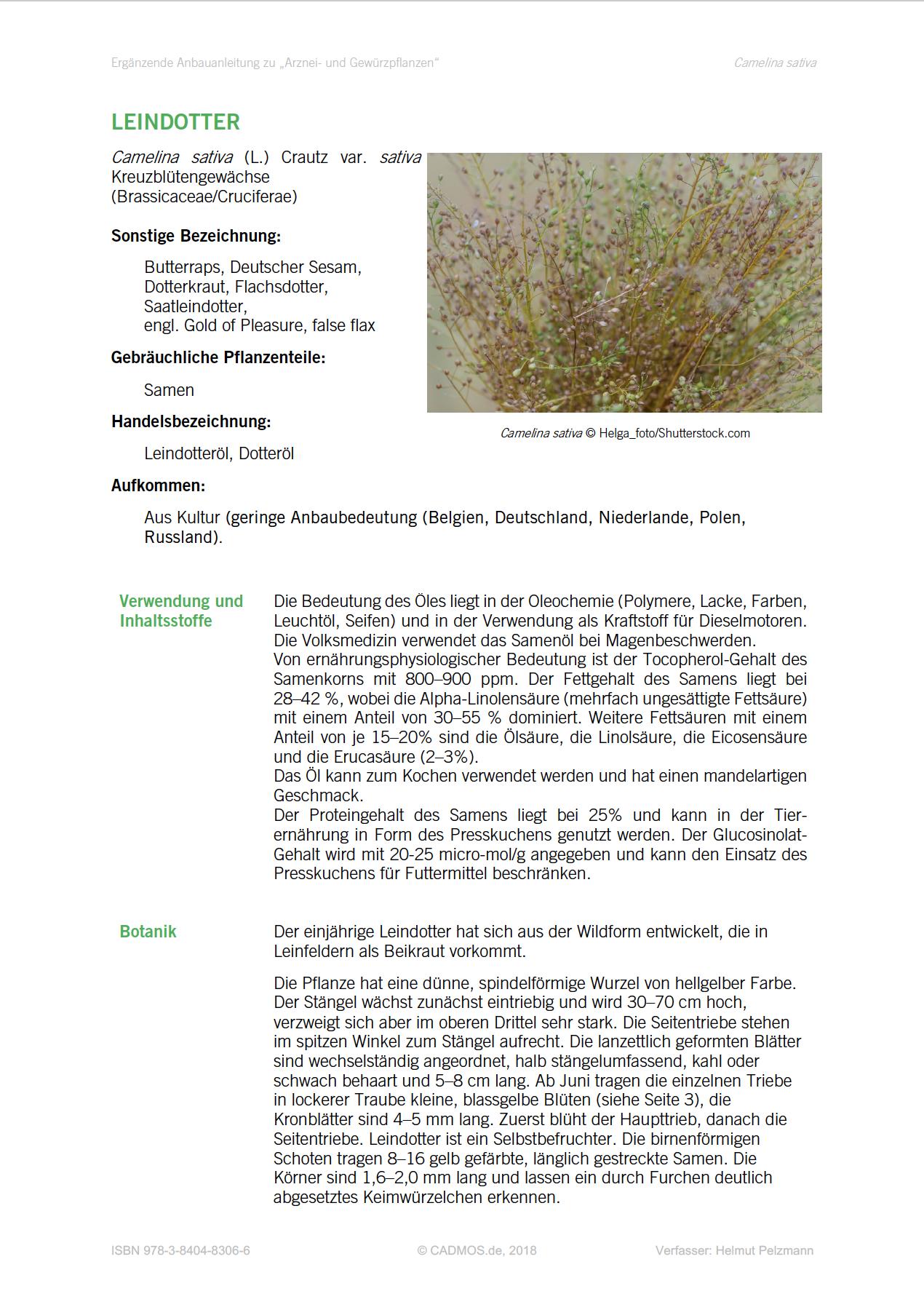 Arznei- und Gewuerzpflanzen, Anbauanleitung Leindotter, 2018